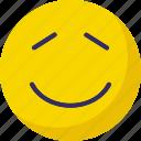 emoticon, emoticons, emotion, face icon