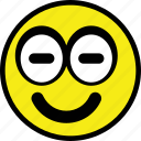 emoticon, emotion, face, happy, smiley icon
