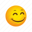 emoticon, pleased, satisfied icon