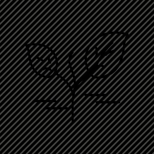 environment, leaf, power icon