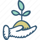 care, ecology, gardening, growth, hand, plant, plant icon