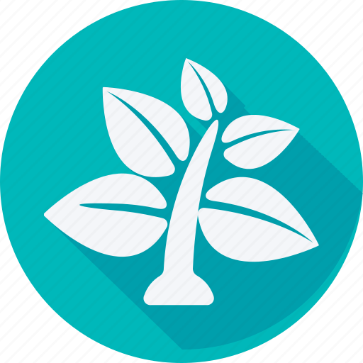Ecology, energy, environment, nature, leaf, plant, tree icon - Download on Iconfinder