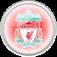 flag, football, liverpool, premier english icon