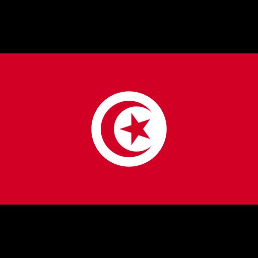 ensign, flag, nation, tunisia icon