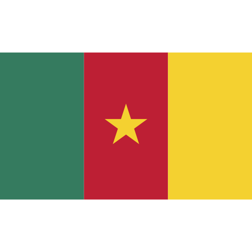 cameroon, ensign, flag, nation icon