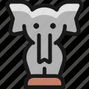 circus, elephant