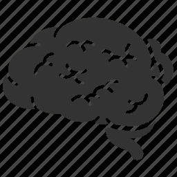 anatomy, brain, entrail, mind, neurology, organ, think icon