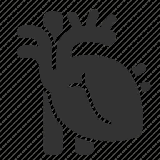 cardiology, cardiovascular, core, entrail, healthy, heart, organ icon