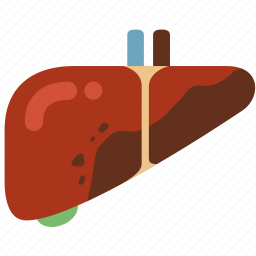 cancer, disease, hepatitis, infection, liver, liver cirrhosis, virus icon