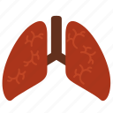 anatomy, body, breathe, entrail, healthy, lungs, organ icon