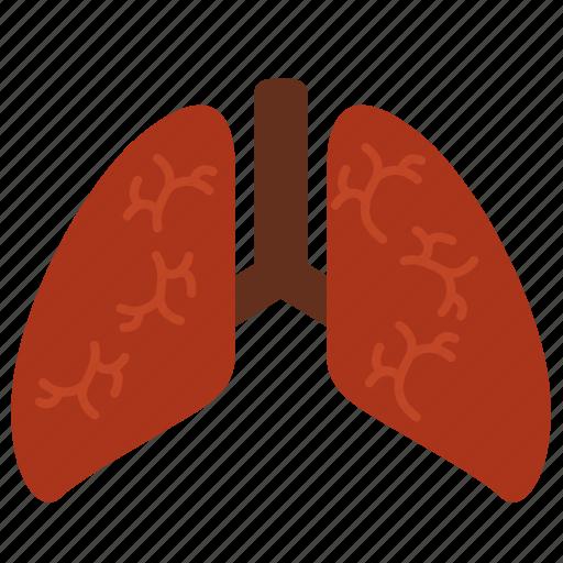 anatomy, body, breathe, entrail, healthy, lungs, organ icon