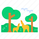 animal, forest, jungle, wild, wildlife