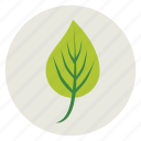 ecology, green, leaf, nature, plant, tree icon