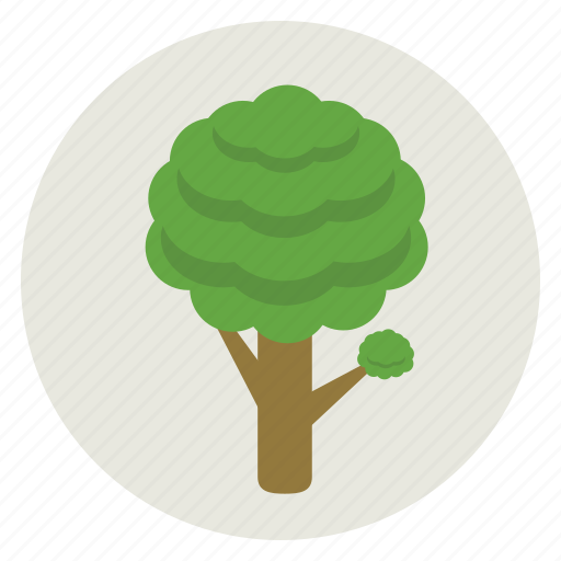 ecology, environment, green, nature, plant, tree icon