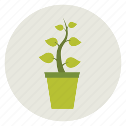 ecology, green, nature, plant, pot, potted plant icon