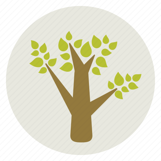 ecology, environment, green, nature, tree icon