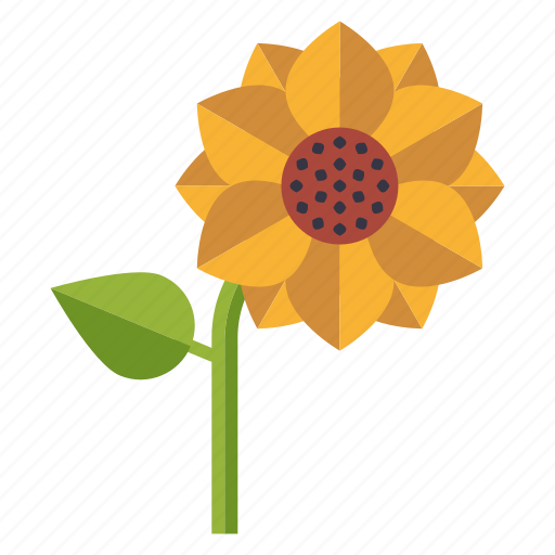 bloom, blossom, ecology, environment, nature, plant, sunflower icon