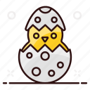 baby chick, bird, chick, chicken, easter eggs, poultry icon