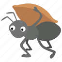aesop, ant, carrying, fable, foraging, worker, working