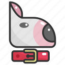 animal, animals, breed, bull terrier, dog, mammal, pet icon