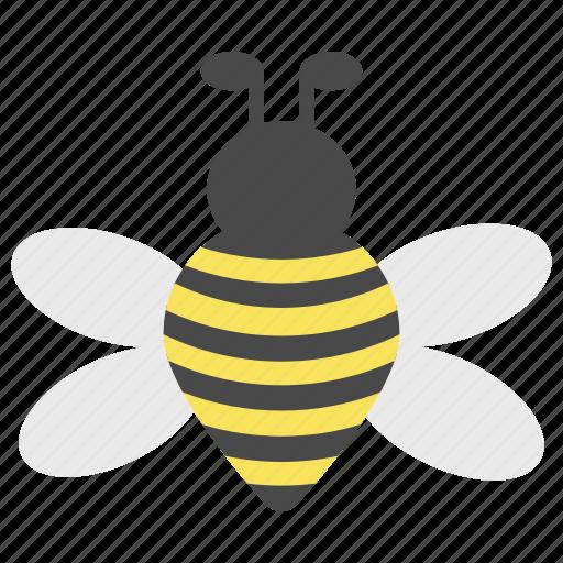 bee, bug, farm, farmland, garden, landscape, nature icon
