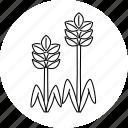 agriculture, crops, farm, plants icon