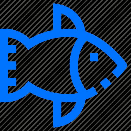 Animal, aquatic, farm, fish, garden icon - Download on Iconfinder