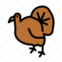 animals, chicken, dinner, food, thanksgiving, turkey icon