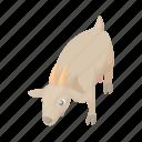 animal, cartoon, cow, dairy, domestic, farm, livestock icon