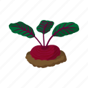 cartoon, green, ground, plant, radish, root, underground icon