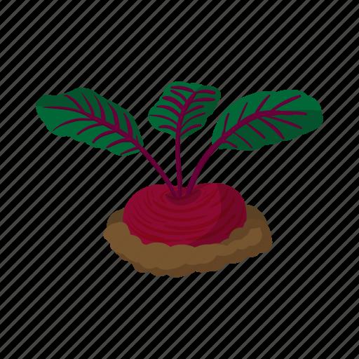 cartoon, green, ground, plant, radish, root, underground icon