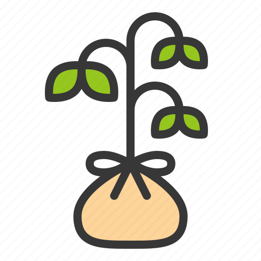 Sprout, farming, young plant, tree, seedling icon
