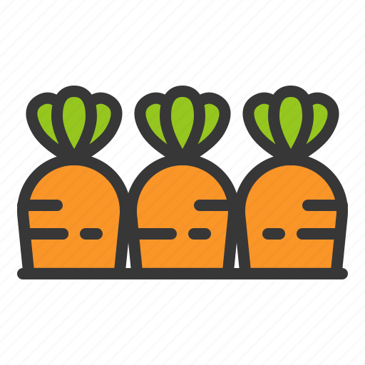 carrot, carrots, farming, food, vegetable icon