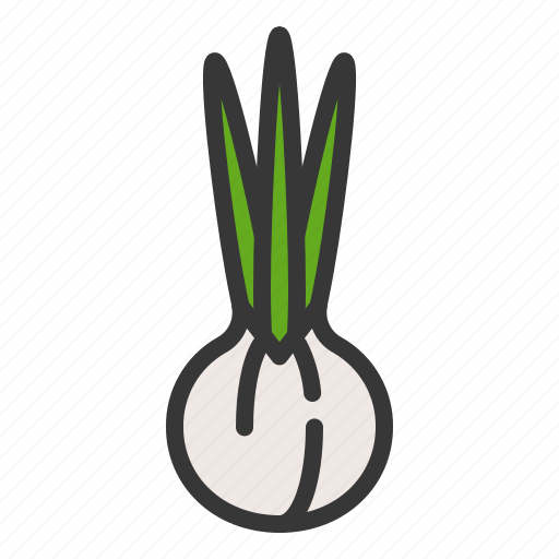 farming, food, spring onion, vegetable icon