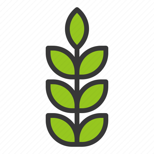 farming, plant, sprout, tree, young plant icon