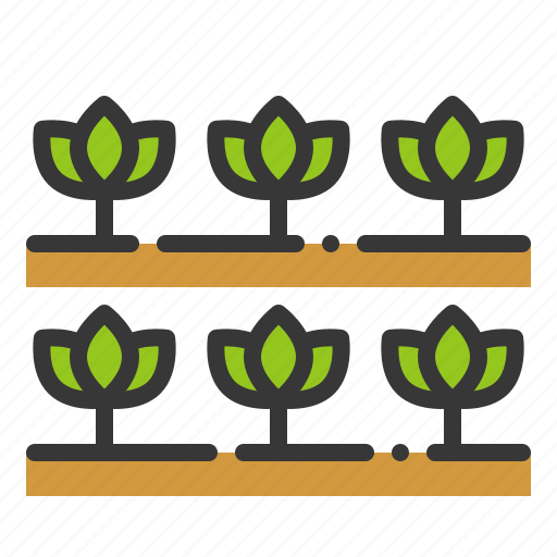 farming, field, garden, seedling, sprout, vegetable, young plant icon