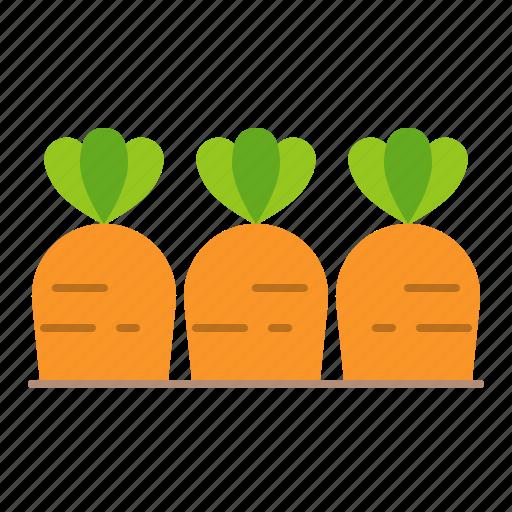 carrot, farm, food, vegetable, vitamin icon