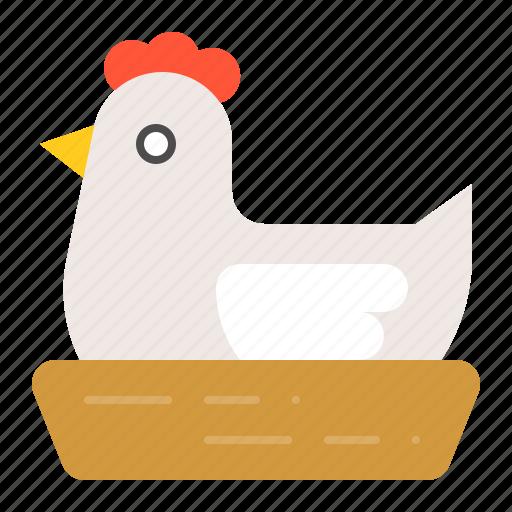 animal, farm, hatch, hatching, hen icon