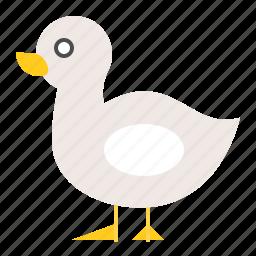 animal, duck, farm, farming, poultry icon