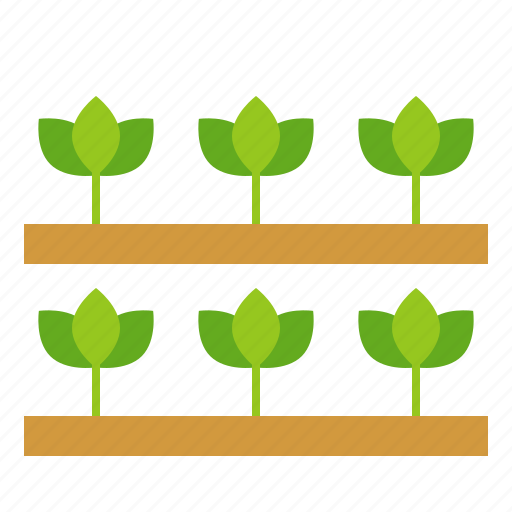 agriculture, farm, field, plant, seedling, sprout, young plant icon