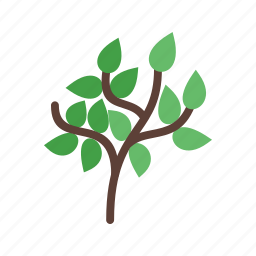 environment, forest, green, leaf, nature, summer, tree icon