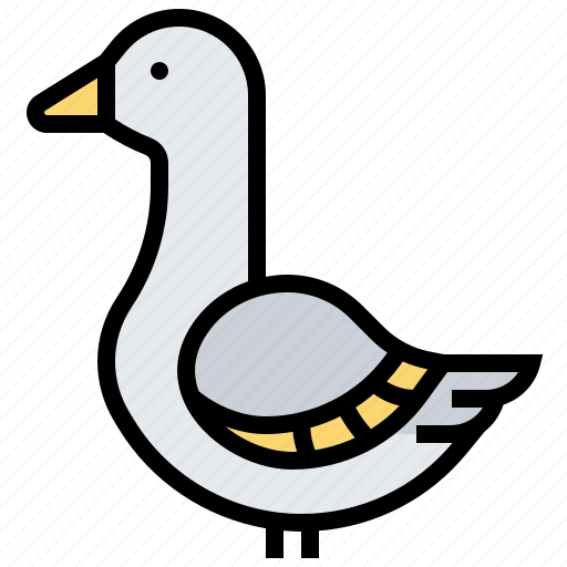 animal, bird, duck, goose, mallard icon
