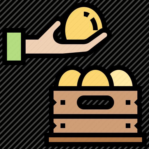 agriculture, egg, farm, goods, harvest icon