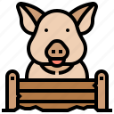 animal, farm, mammal, pig, piglet