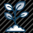 botany, eco, ecology, nature, plant, seedling, sprout icon