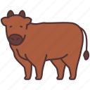 agriculture, animal, cow, farming, garden, gardening icon