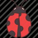 agriculture, animal, bug, farming, fly, gardening