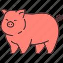 agriculture, animal, farming, gardening, pig, pork icon