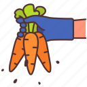carrot, farming, agriculture, vegetable, gardening, harvest, organic icon