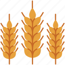 agriculture, farming, food, gardening, leaves, rice, wheat icon